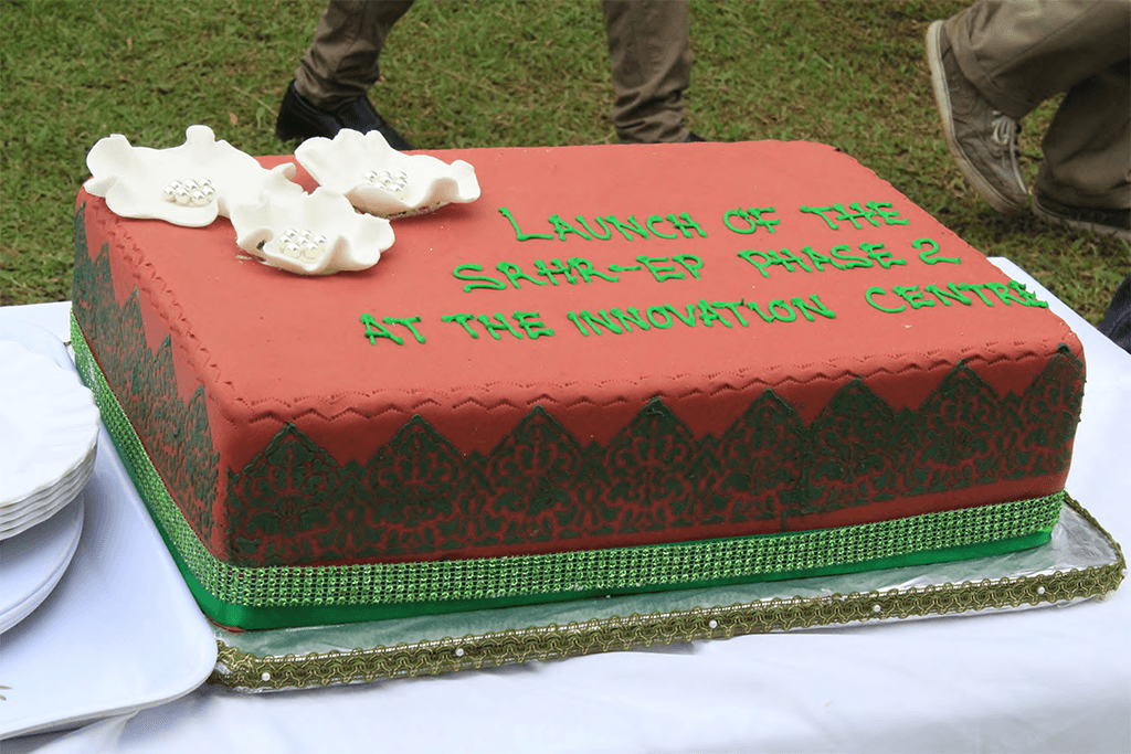 Cake prepared for the launch of the project